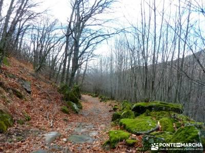 Sierra de Gata, Trevejo,Hoyos,Coria; selva de irati buitrago de lozoya trekking sierra de gredos